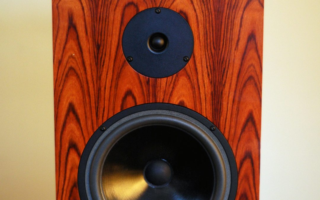 Audio Note AN-K/SPe speakers Review