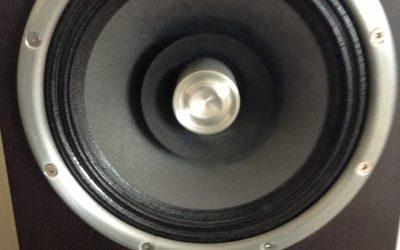Zu Omen Speakers For Sale
